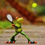 Biletul zilei tenis